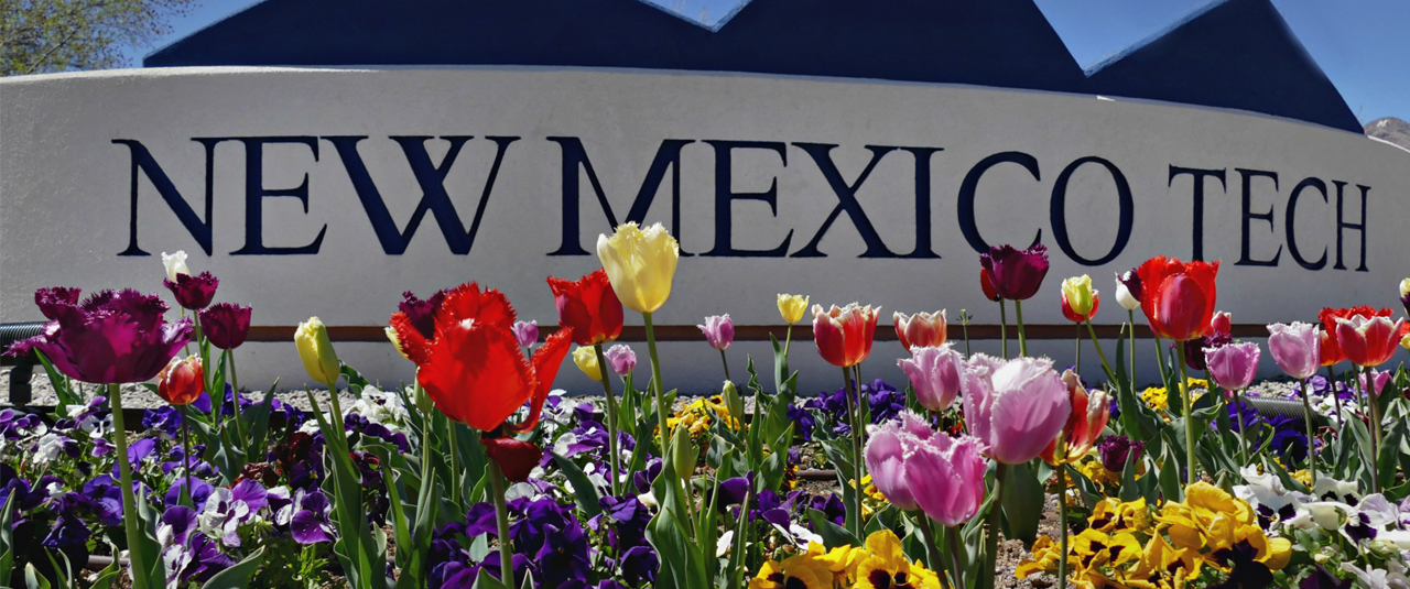 Image of New Mexico Tech sign with colorful flowers in front of the sign.