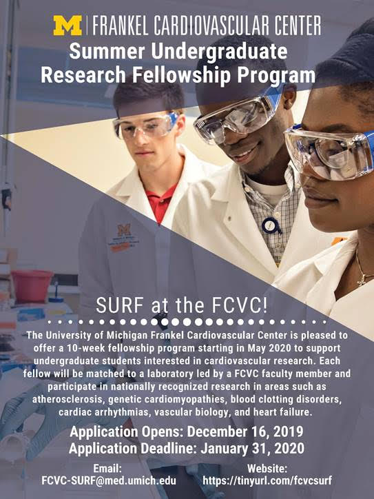 FCVC Summer Internship Information