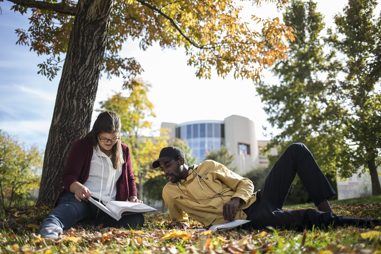 Two students studying under a tree in a courtyard on campus surrounded by yellow, red, and orange leaves that have fallen from the tree above them.